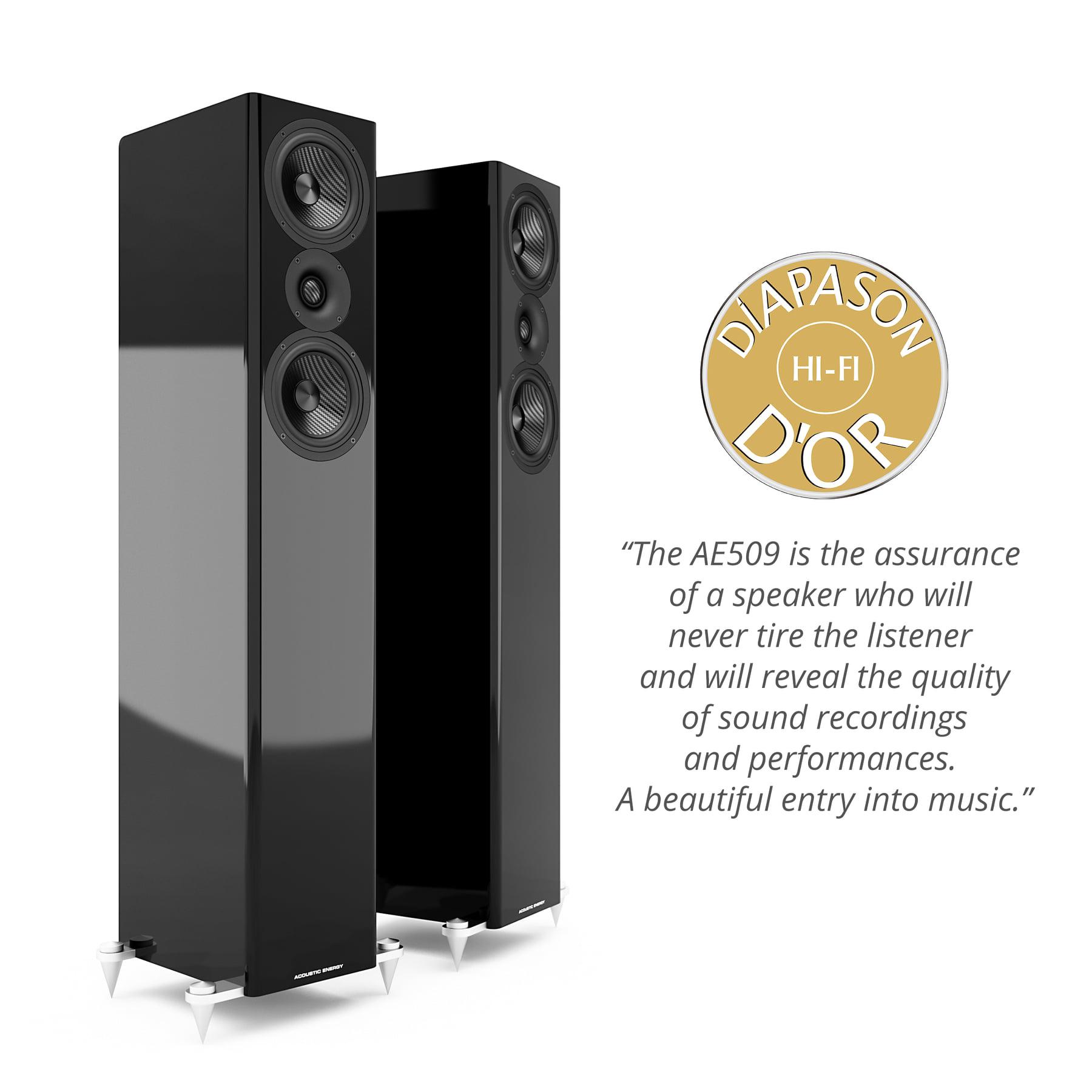 Тонколона Acoustic Energy AE509